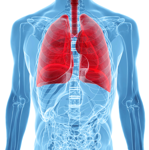 New Merger Bolsters Development of Drug For Idiopathic Pulmonary Fibrosis, a Disease Associated With PH