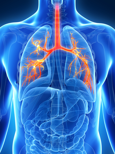Pulmonary Hypertension Among List of Major Lung Diseases Associated With NSP