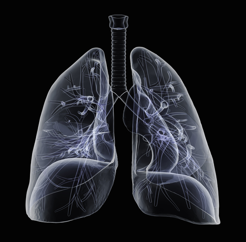 INOmax Vasodilator Device For Pulmonary Hypertension Approved In Australia And Japan