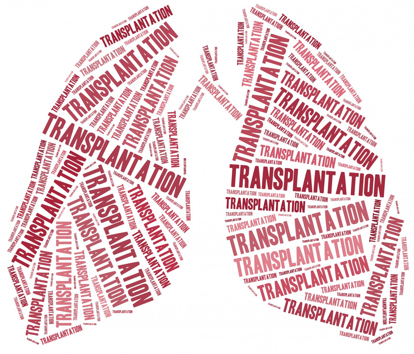 PH Patients Given Higher Lung Transplant Priority with Revised LAS