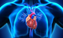 New Data on Actelion Pulmonary Arterial Hypertension Drugs Selexipag and Macitentan in Upcoming Congress