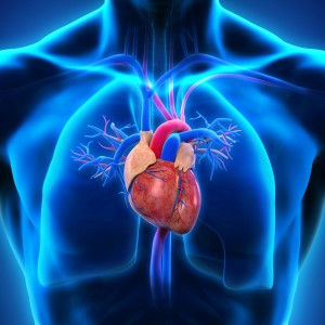 Pulmonary Hypertension Causes