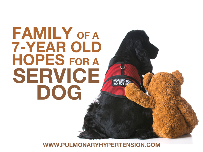ph_servicedog