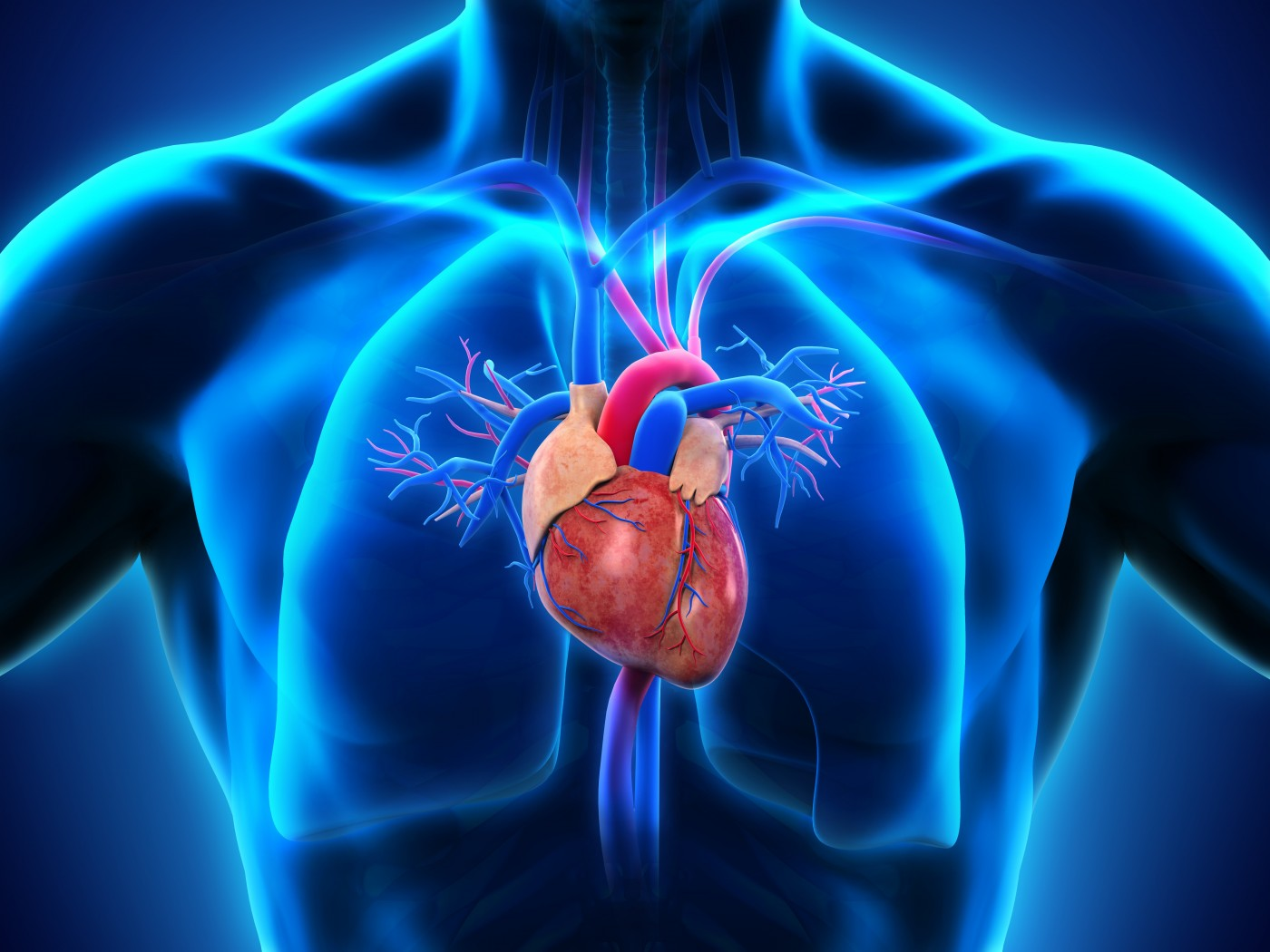 Nonsustained ventricular tachycardia study