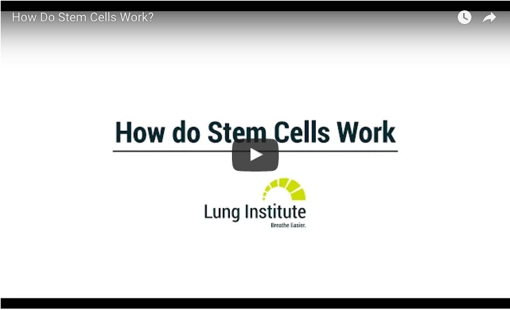 pulmonary hypertension stem cells