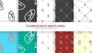 8 facts lungs ph