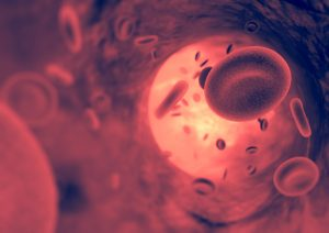 Bosentan improves endothelial function in PH patients, but not in CTEPH