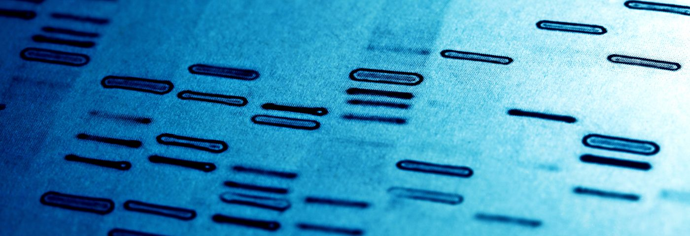 PAH Study Reveals Unexpected Genetic Complexity
