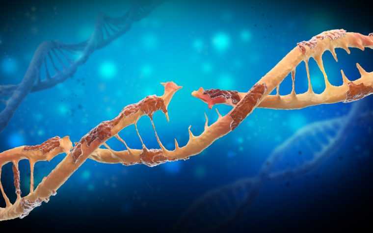 PAH might be linked to increased sensitivity to DNA damage