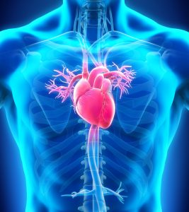 Opsumit Reduces PAH Severity by Halting Associated Metabolic Changes, Study Shows