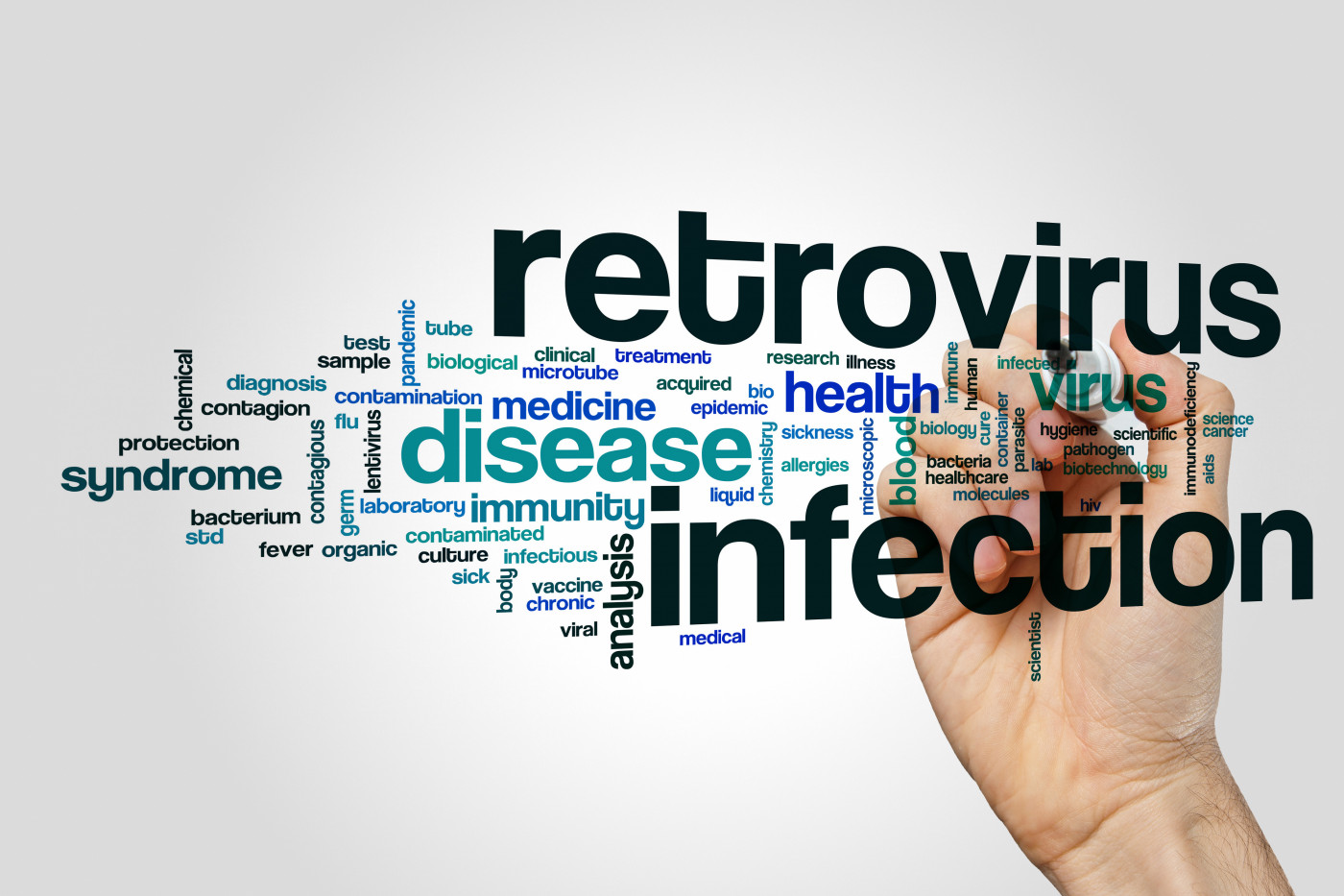 Retrovirus and PAH in rats