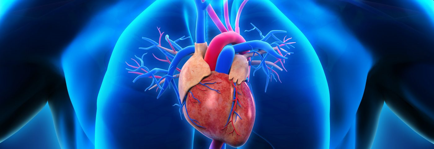 Heart Transplant Program at UC San Diego Recognized for 1-year Survival Rate of 98.7%, Best in US