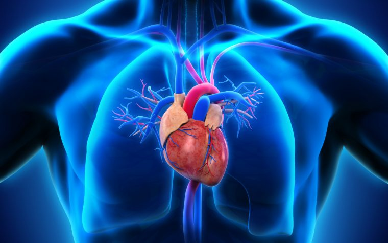 heart transplants and survival