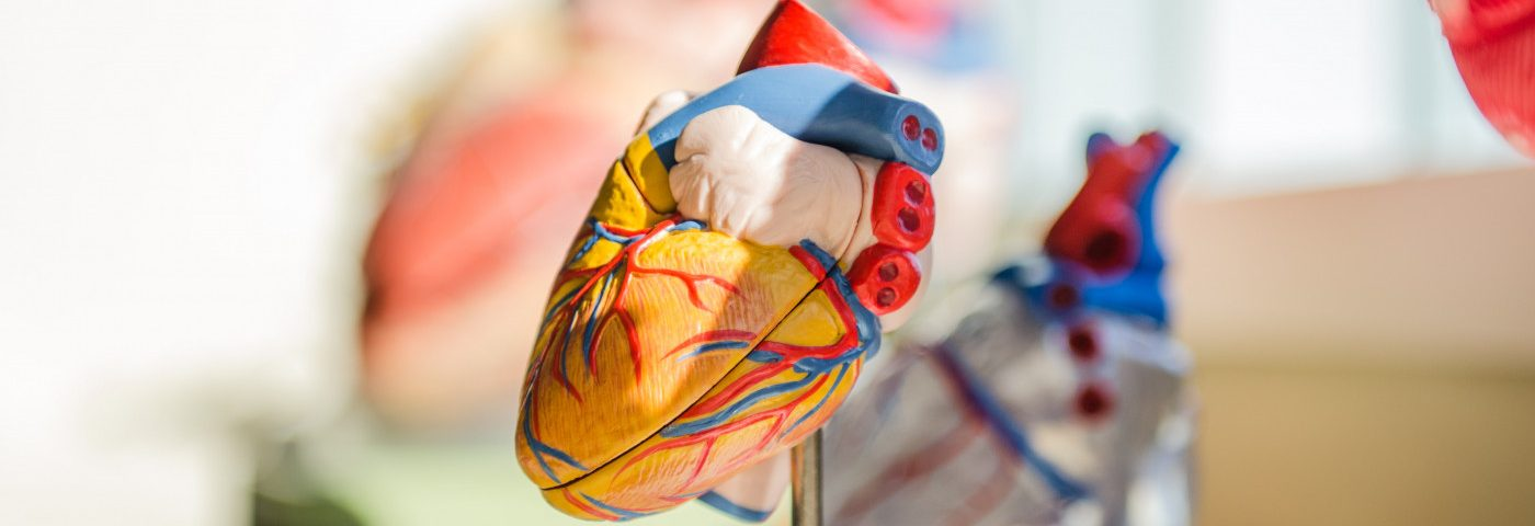 PH Risk and Its Severity Tied to Birth Defect in Blood Vessels of Heart